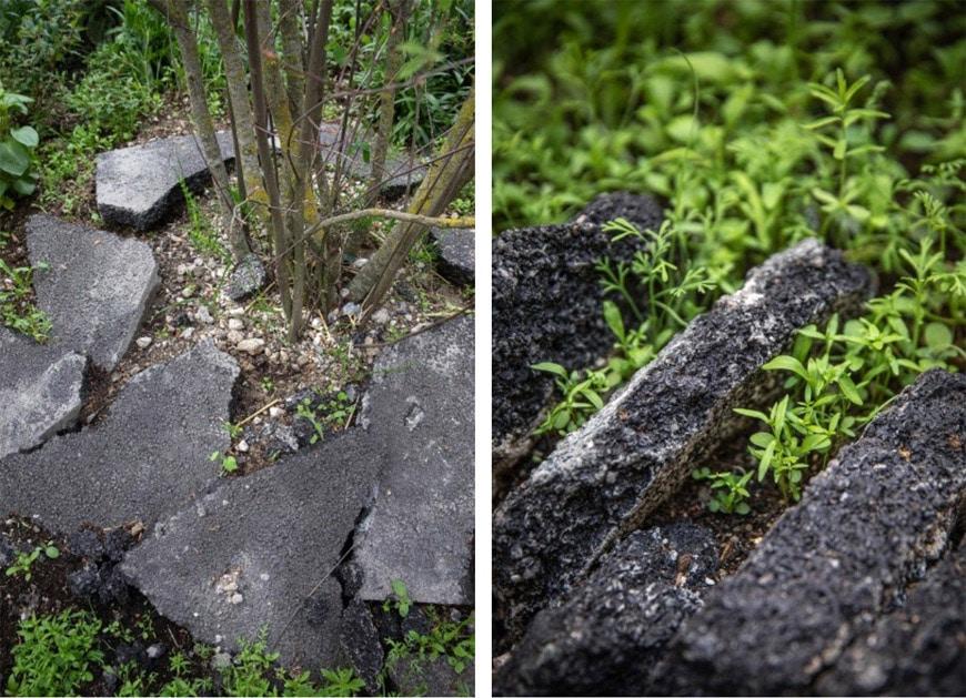 aphalte-jungle-foto-Yann-Monel-1-courtesy-FAIRE-Paris