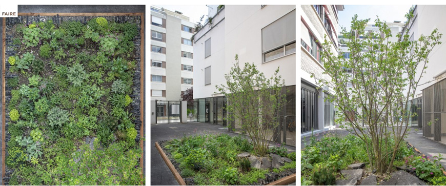aphalte-jungle-foto-Yann-Monel-2-courtesy-FAIRE-Paris